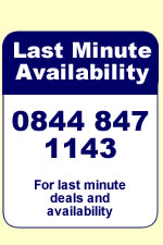Last minute deals and availability